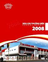 Báo cáo thường niên năm 2008 - Công ty Cổ phần Tập đoàn Kido