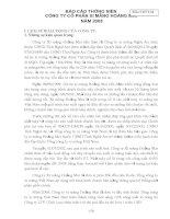Báo cáo thường niên năm 2008 - Công ty cổ phần Xi măng VICEM Hoàng Mai