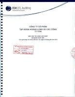 Báo cáo tài chính hợp nhất quý 2 năm 2013 (đã soát xét) - Công ty Cổ phần Tập đoàn Hoàng Long