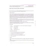 Báo cáo tài chính quý 2 năm 2010 (đã soát xét) - Công ty Cổ phần Kỹ nghệ Khoáng sản Quảng Nam