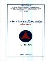Báo cáo thường niên năm 2014 - Công ty Cổ phần Khoáng sản và Vật liệu xây dựng Lâm Đồng