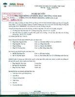 Nghị quyết Đại hội cổ đông bất thường ngày 23-12-2010 - Công ty Cổ phần Hoàng Anh Gia Lai
