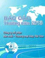 Báo cáo thường niên năm 2013 - Công ty Cổ phần Sản xuất Thương mại May Sài Gòn