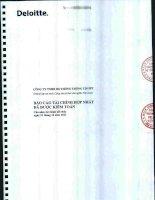 Báo cáo tài chính hợp nhất năm 2011 (đã kiểm toán) - Công ty Cổ phần Hệ thống Thông tin FPT