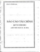 Báo cáo tài chính quý 2 năm 2011 - Công ty Cổ phần Basa