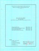 Báo cáo tài chính quý 3 năm 2015 - Công ty cổ phần VICEM Bao bì Bút Sơn