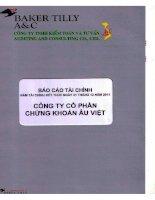 Báo cáo tài chính năm 2011 (đã kiểm toán) - Công ty Cổ phần Chứng khoán Âu Việt