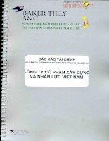 Báo cáo tài chính công ty mẹ năm 2013 (đã kiểm toán) - Công ty cổ phần Xây dựng và Nhân lực Việt Nam
