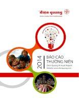 Báo cáo thường niên năm 2014 - Công ty Cổ phần Bóng đèn Điện Quang