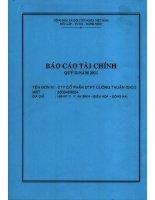 Báo cáo tài chính công ty mẹ quý 2 năm 2011 - Công ty Cổ phần Đầu tư Phát triển Cường Thuận IDICO