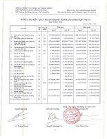 Báo cáo KQKD hợp nhất quý 4 năm 2012 - Tổng Công ty Cổ phần Đầu tư Phát triển Xây dựng