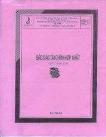 Báo cáo tài chính hợp nhất quý 1 năm 2010 - Công ty Cổ phần Ngoại thương và Phát triển Đầu tư Thành phố Hồ Chí Minh