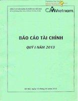Báo cáo tài chính công ty mẹ quý 1 năm 2013 - Công ty cổ phần Xây dựng và Nhân lực Việt Nam