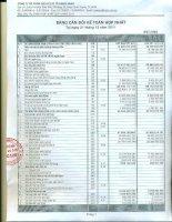 Báo cáo tài chính hợp nhất quý 4 năm 2011 - Công ty Cổ phần Dịch vụ Ô tô Hàng Xanh
