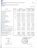 Báo cáo KQKD hợp nhất quý 1 năm 2011 - Công ty Cổ phần Ngoại thương và Phát triển Đầu tư Thành phố Hồ Chí Minh