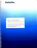 Báo cáo tài chính quý 2 năm 2012 (đã soát xét) - Công ty Cổ phần Việt An