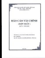 Báo cáo tài chính hợp nhất quý 3 năm 2013 - Công ty Cổ phần Đầu tư Phát triển Cường Thuận IDICO