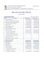 Báo cáo tài chính quý 2 năm 2009 - Công ty Cổ phần Chế tạo Bơm Hải Dương