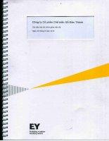 Báo cáo tài chính quý 2 năm 2013 (đã soát xét) - Công ty Cổ phần Chế biến Gỗ Đức Thành