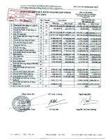Báo cáo KQKD hợp nhất quý 4 năm 2010 - Công ty Cổ phần Tập đoàn Đức Long Gia Lai