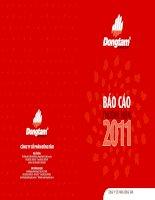 Báo cáo thường niên năm 2011 - Công ty Cổ phần Đồng Tâm