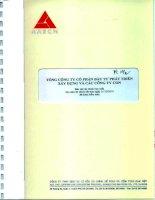 Báo cáo tài chính hợp nhất năm 2010 (đã kiểm toán) - Tổng Công ty Cổ phần Đầu tư Phát triển Xây dựng