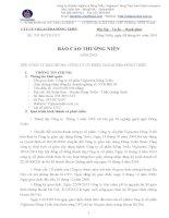 Báo cáo thường niên năm 2013 - Công ty Cổ phần Viglacera Đông Triều