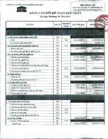 Báo cáo tài chính hợp nhất quý 2 năm 2011 - Công ty Cổ phần Đầu tư và Thương mại DIC