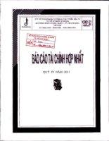 Báo cáo tài chính hợp nhất quý 4 năm 2011 - Công ty Cổ phần Ngoại thương và Phát triển Đầu tư Thành phố Hồ Chí Minh