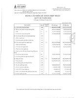Báo cáo tài chính hợp nhất quý 3 năm 2010 - Công ty Cổ phần Dịch vụ và Xây dựng Địa ốc Đất Xanh