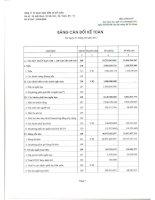 Báo cáo tài chính quý 1 năm 2011 - Công ty cổ phần Gạch Ngói Gốm Xây dựng Mỹ Xuân