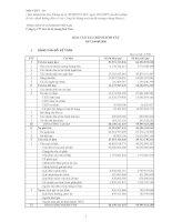 Báo cáo tài chính quý 3 năm 2009 - Công ty cổ phần VICEM Bao bì Bút Sơn
