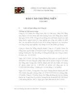 Báo cáo thường niên năm 2007 - Công ty Cổ phần Nhựa Đà Nẵng