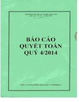 Báo cáo tài chính công ty mẹ quý 4 năm 2014 - Công ty Cổ phần Xuất nhập khẩu Y tế Domesco