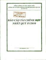 Báo cáo tài chính hợp nhất quý 4 năm 2010 - Công ty Cổ phần Xây dựng và Kinh doanh Vật tư