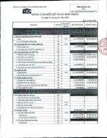 Báo cáo tài chính hợp nhất quý 1 năm 2012 - Công ty Cổ phần Đầu tư và Thương mại DIC