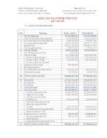 Báo cáo tài chính quý 3 năm 2008 - Công ty Cổ phần Phát triển nhà Bà Rịa-Vũng Tàu