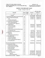 Báo cáo tài chính công ty mẹ quý 3 năm 2013 - CTCP Mía Đường Cần Thơ