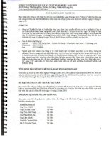 Báo cáo tài chính năm 2010 (đã kiểm toán) - Công ty Cổ phần Du lịch và Xuất nhập khẩu Lạng Sơn