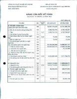 Báo cáo tài chính quý 4 năm 2013 - Công ty Cổ phần Kỹ nghệ Đô Thành