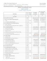 Báo cáo tài chính quý 1 năm 2011 - Công ty Cổ phần Địa ốc Đà Lạt