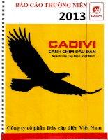 Báo cáo thường niên năm 2013 - Công ty cổ phần Dây Cáp Điện Việt Nam