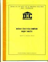 Báo cáo tài chính hợp nhất quý 1 năm 2013 - Công ty Cổ phần Đầu tư và Thương mại DIC