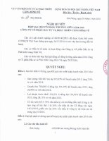 Nghị quyết Đại hội cổ đông thường niên - Công ty cổ phần Đầu tư và Phát triển Cảng Đình Vũ