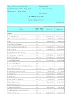 Báo cáo tài chính công ty mẹ quý 3 năm 2011 - Công ty Cổ phần Tập đoàn Đại Châu