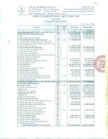 Báo cáo tài chính quý 2 năm 2015 - Công ty Cổ phần Chế biến Gỗ Thuận An