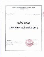 Báo cáo tài chính quý 2 năm 2012 - Công ty cổ phần Đầu tư và Phát triển Cảng Đình Vũ