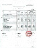 Báo cáo tài chính công ty mẹ quý 1 năm 2011 - Công ty Cổ phần Sản xuất Thương mại May Sài Gòn