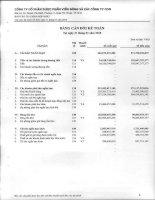 Báo cáo tài chính quý 1 năm 2010 - Công ty Cổ phần Dược phẩm Viễn Đông