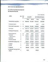 Báo cáo KQKD hợp nhất quý 3 năm 2010 - Công ty Cổ phần Đầu tư Phát triển Cường Thuận IDICO